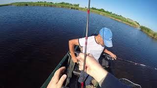 Рыбалка каневской район лиман сладкий