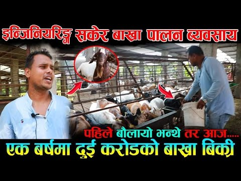 अचम्म... बाख्रा पाल्ने IT इन्जिनियर ।। पहिले त बौलायो भन्थे तर आज ...  Goat Farming In Nepal