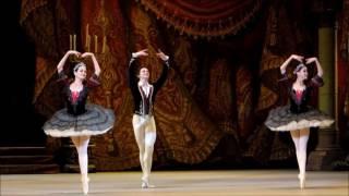 HD Гранд Па из балета Пахита Наталья Ершова, Сергей Полунин 01 04 2014