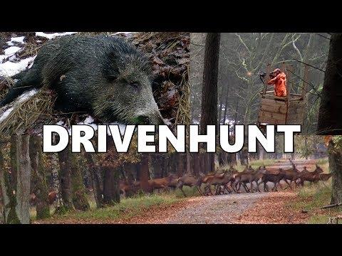 Pohádkový lov