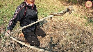 ถึงกับร้อง!! ฮอดบ่ท่อของอ้ายปุ้ย แทงปลาไหลด้วยเหล็มแหลม โดยหญิงเหล็กอิสานบ้านดงน้อย