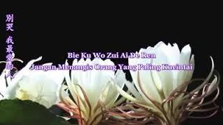 Jagan Mengangis Orang Yang Paling Kucintai /bie Ku Wo Zui Ai De Ren