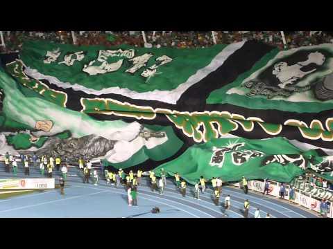 """""""Salida Del Deportivo Cali Vs Millonarios / 22 De Junio 2013"""" Barra: Frente Radical Verdiblanco • Club: Deportivo Cali"""