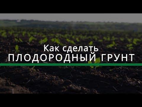 Как сделать плодородный грунт? (3 простых шага для увеличения урожая)