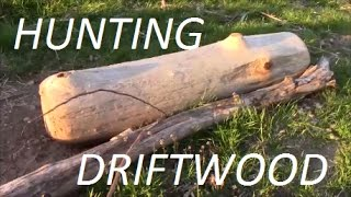 Picking Up Driftwood On The Ohio River, Madison Indiana