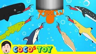 한국어ㅣ우리집 세면대 밑에 고래가 살고 있다!! 어린이 고래만화, 고래 이야기ㅣ꼬꼬스토이