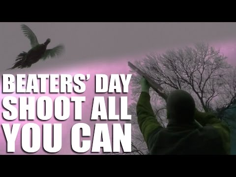 Beaters' day: shoot all you can