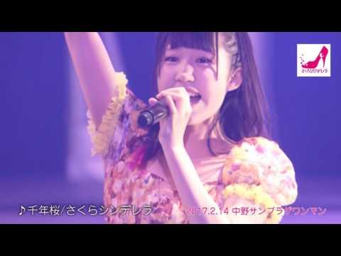 『千年桜』 PV ( #さくらシンデレラ )
