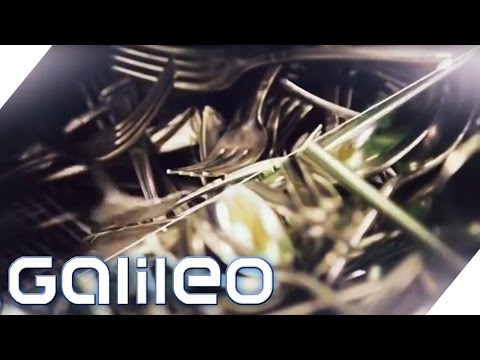 Fakten zur Besteck-Produktion | Galileo | ProSieben