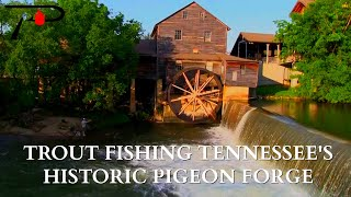 Trout Fishing Tennessee's Pigeon Forge