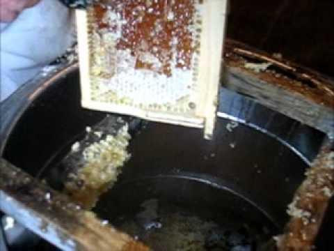 Срезание забруса, откачка мёда в медогонке