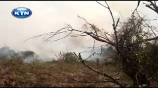 Eco-journal : Wild fires