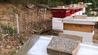 Beekeeping - Rain Covers And MOAB Walnut Protectors