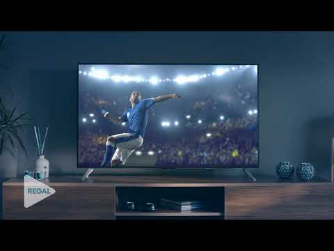 REGAL 4K TV - RENKLER