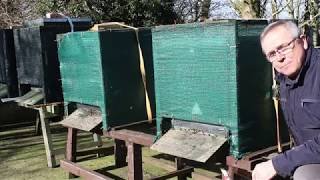 Beekeeping UK.. spring build up part 1