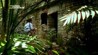 Selva Profunda  3 - Nuestra Naturaleza Salvaje