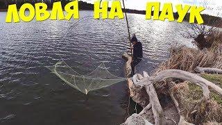Пауки экраны для рыбалки