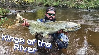 Epic Michigan River Salmon Fishing on the Fly! - Pere Marquette!
