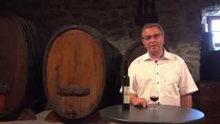 Video Roberto Schmidt d