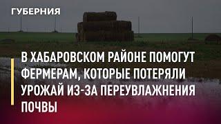В Хабаровском районе помогут фермерам, которые потеряли урожай из-за переувлажнения почвы. 12/07/21