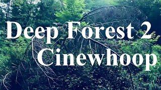 Deep Forest 2 !! FPV Racing Drone Cinewhoop 自然 空撮