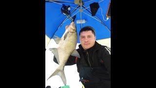 Зимняя рыбалка на озере сиг тверская область