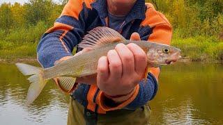 Рыбалка на реке лопья пермский край
