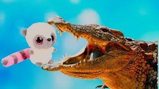 🐥 Детский мультфильм 👶🏼 Серия №3🌞 Мультсериал Ля-Ля Мур 🕉 нападение крокодилов часть 1