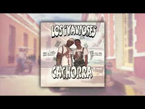 King Badboy X El Yabo - Cachorra 🐶 (Audio Oficial)