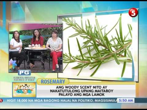 Lunas para sa kuko halamang-singaw sa iyong mga kamay