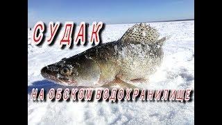 Зимняя рыбалка обское водохранилище