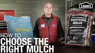How To Choose the Right Mulch | Mulch Buying Guide