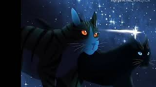 Клип Гучи Коты Воители