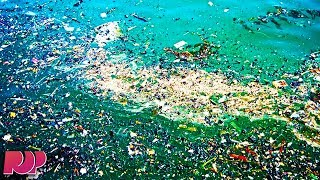 The Great Pacific Garbage Patch - What You Need To Know
