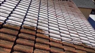 SoftWash Tile Roof Cleaning in San Jose, CA