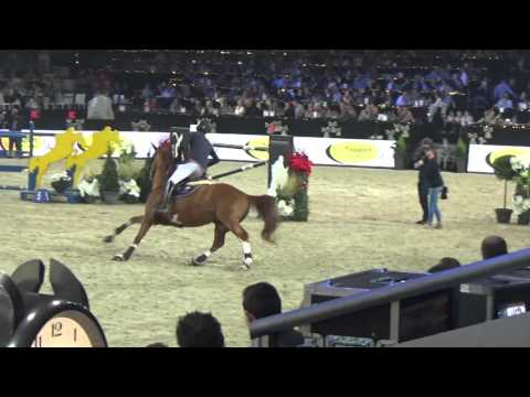 Emerald - Mechelen CSI5* Stallion Competition Jump Off