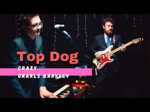 Top Dog Video