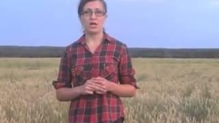 Курский фермер пообещала сжечь урожай в обращении к Владимиру Путину