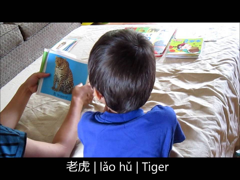 Mandarin Chinese Lesson for Kids - Animals