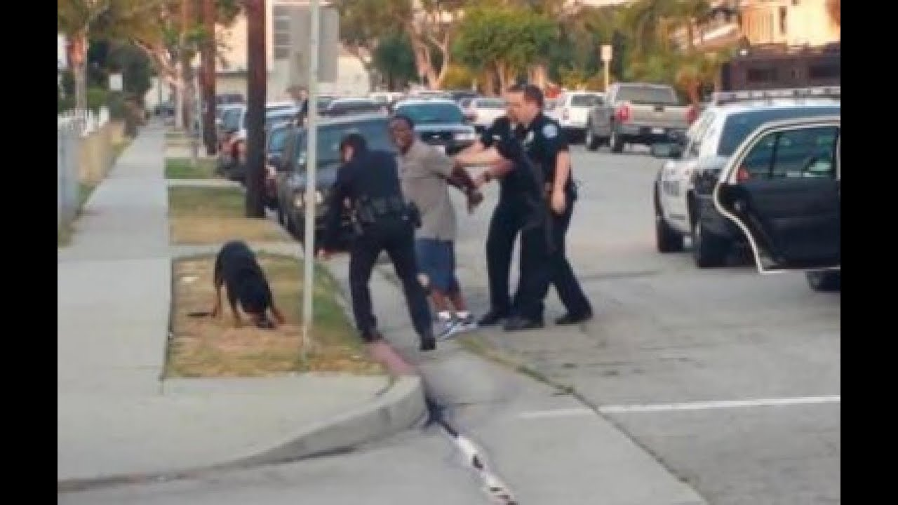 Police Kill Dog - New Footage (Graphic Video) thumbnail