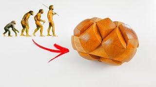 Tentei resolver o enigma que desafia a TEORIA DA EVOLUÇÃO proposta por CHARLES DARWIN!!