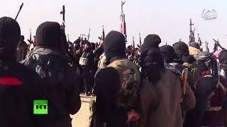 Анархия, хаос и терроризм: к чему привела западная интервенция в Ливию