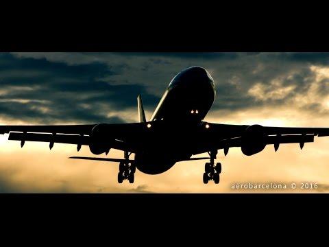 - A V I A T I O N -  A Short Film
