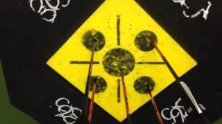 365 Archery Target Torture Test Update#1 500 Shots