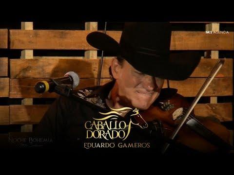Eduardo Gameros de Caballo Dorado en Noche Bohemia