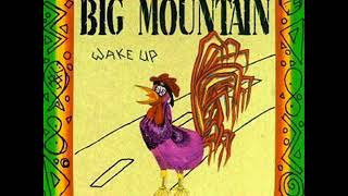 Big Mountain    Peaceful Revolution   1992