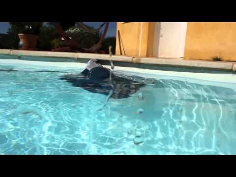 Limpiafondos Automático Hayward Shark Vac Pilot