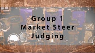 Market Steer Judging