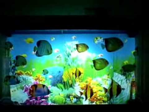 how to make a self sustained aquarium