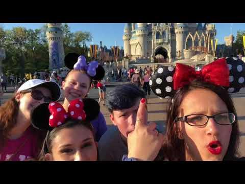 Theme Park Management - Disney Trip 2018